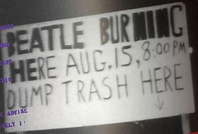 beatle burning