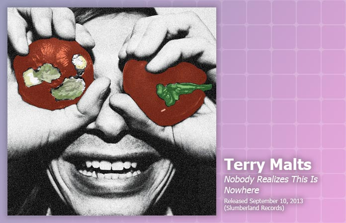 terry-malts-nobody-realizes-review-header-graphic