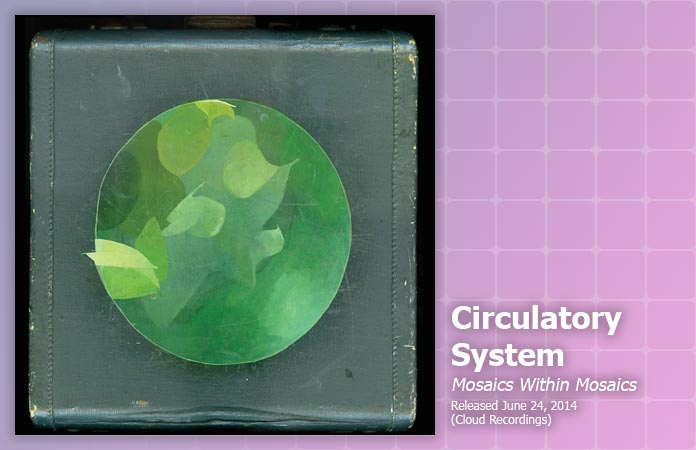 circulatory-system-mosaics-review-header-graphic