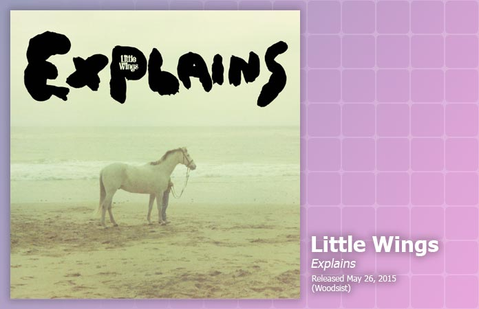 little-wings-explains-review-header-graphic