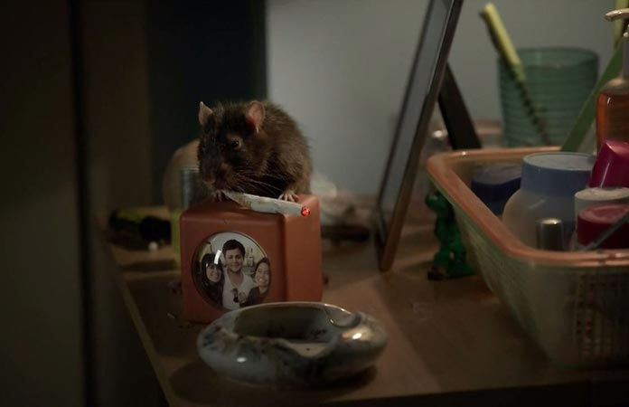the-rat-is-a-weed-thief-broad-city