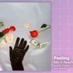 Music Review: Peeling, Rats In Paradise
