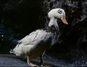 gertrude the duck