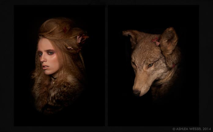 diptych-coyote