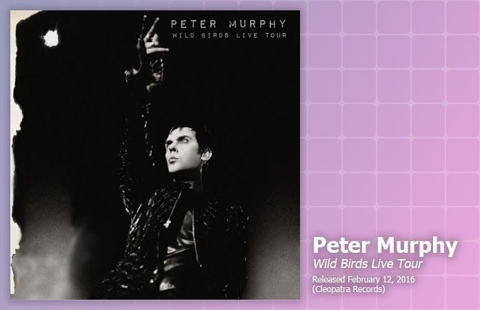 peter-murphy-wild-birds-review-header-graphic